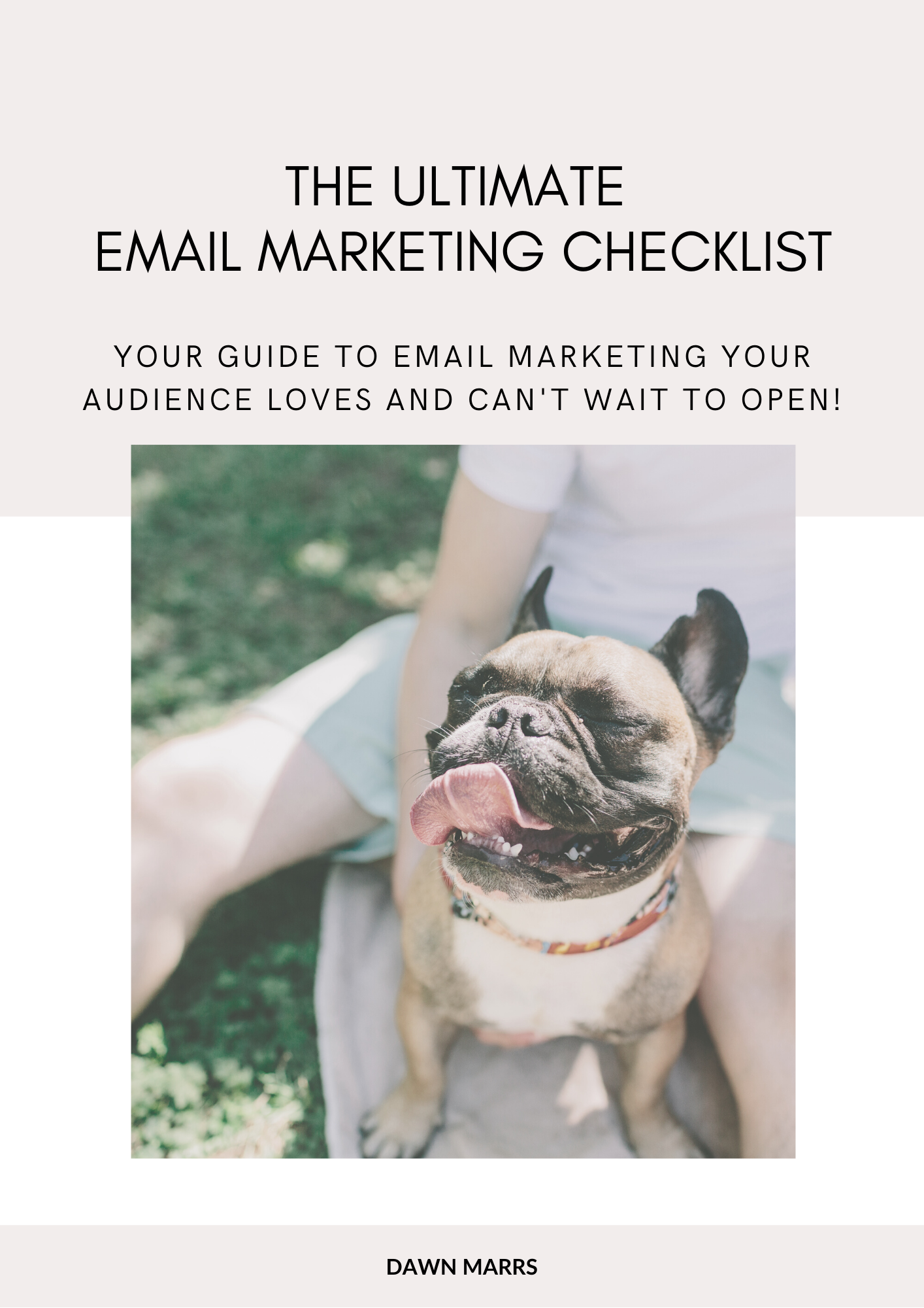 Lead magnet _ Email Marketing Checklist